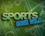 sports-gone-wild-logo1